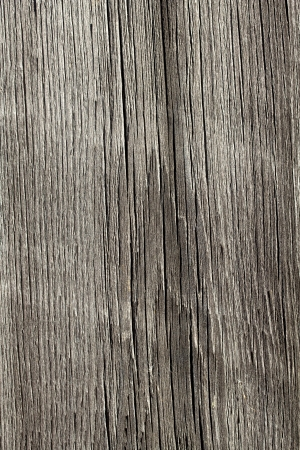 An image of a beautiful old grunge wood background photo