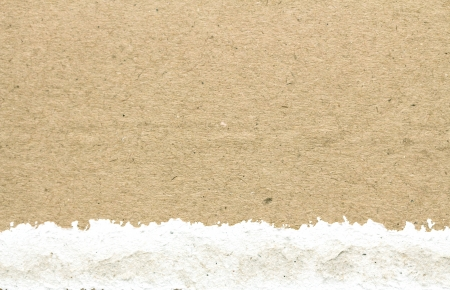 natural brown recycled paper texture background Foto de archivo