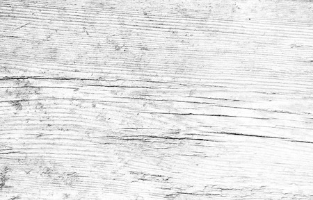 white texture: Black and white wood texture