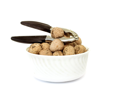 walnuts on a white background photo