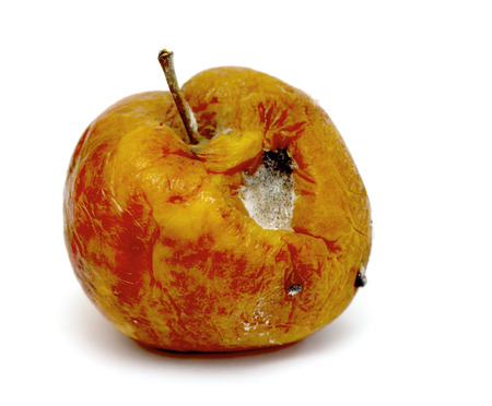 rancid: spoiled rotten apple on a white background Stock Photo