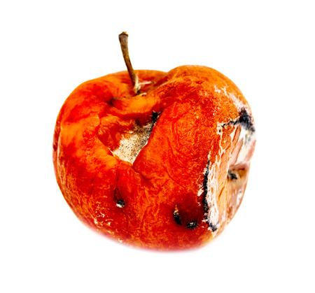 putrefy: spoiled rotten apple on a white background Stock Photo