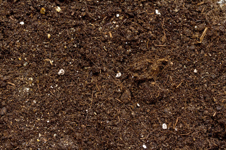 Pile des Bodens für die Pflanze isoliert auf weißem Hintergrund Standard-Bild - 33997633