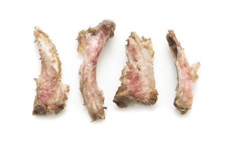 leftover: Rib bones picked clean of meat on a white background