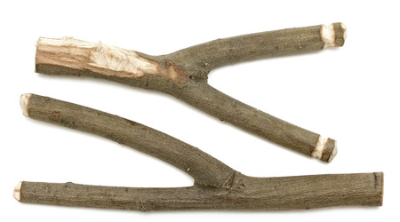 wooden sticks on a white background photo