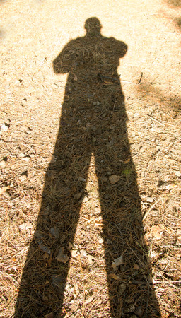 origin of man: shadow of a man on the ground in the forest