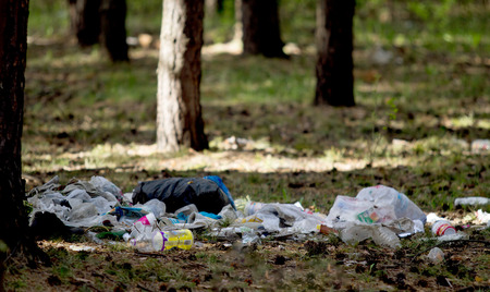putrefy: a pile of garbage in the forest ecology Stock Photo