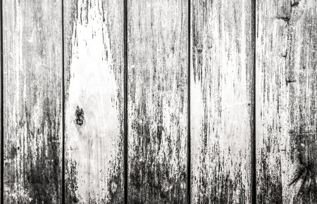 fence: Wooden fence panel  Stock Photo
