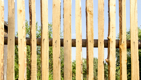 fence panel: Wooden fence panel