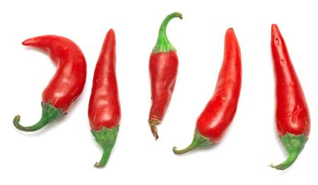 chiles picantes: Chiles rojos aislados sobre fondo blanco Foto de archivo