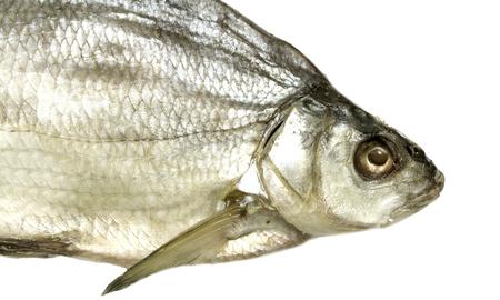 river fish: Bream River fish, dried