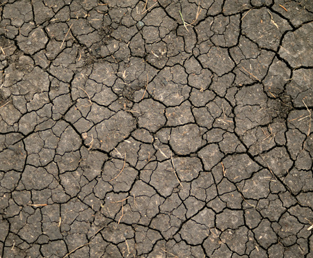 desert water: Dry cracked earth background, clay desert texture Stock Photo