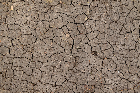 the desert: Dry cracked earth background, clay desert texture Stock Photo