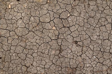 desert sand: Dry cracked earth background, clay desert texture Stock Photo