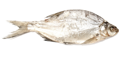 bream: Dried river bream on a white background