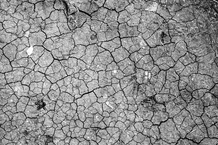 barren land: Dry cracked earth background, clay desert texture Stock Photo