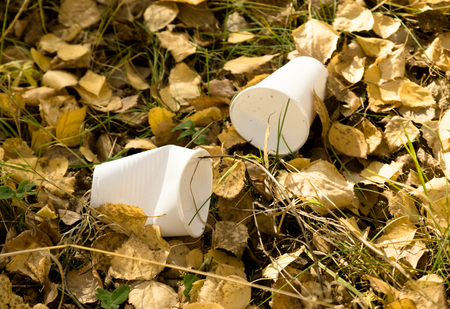 putrefy: trash, plastic ware on yellow leaves