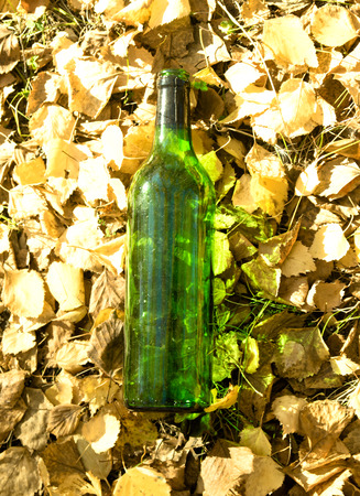 needless: garbage, glass bottle on yellow leaves