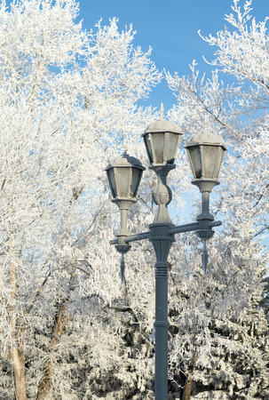 decorative street lamp, winter