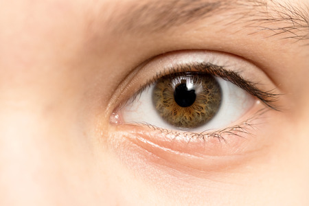 Close up view of a brown  eye - no make up on 版權商用圖片 - 49009485