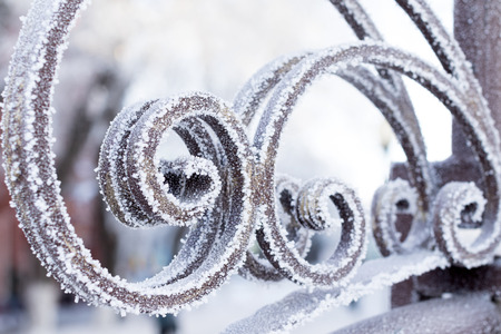 frost bound: Snow metal fence
