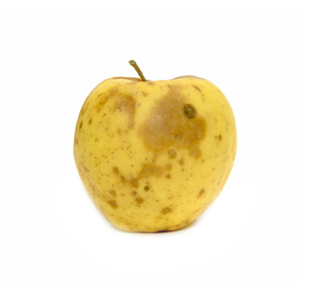 decomposed: yellow apple with a mold on a white background