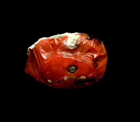 perish: missing rotten tomato on a black background