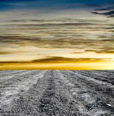 rural development: plowed field against the sky Stock Photo