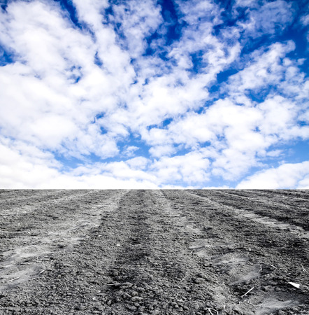 plowed: plowed field against the sky Stock Photo