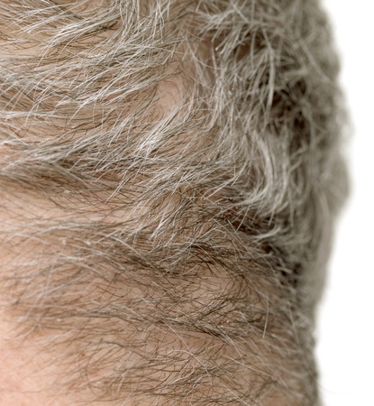 gray haired: gray haired mans head