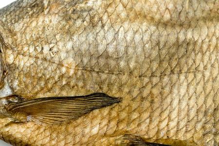 escamas de peces: escamas de pescado viejo fondo amarillo Foto de archivo