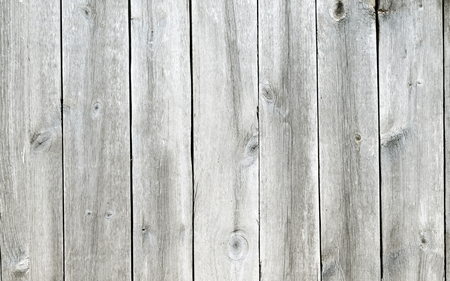 wooden boards: wooden fence panel background