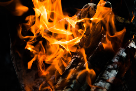igniting: fire flames, burning campfire closeup