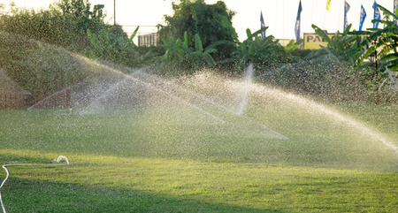 sprinkle system: Irrigation System Watering the green grass