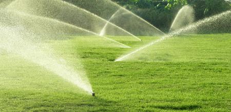 water garden: Irrigation System Watering the green grass, blurred background