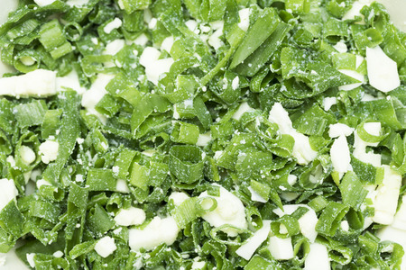 chopped: chopped green onion egg, background