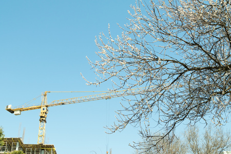 builds: tower crane builds the house, nature