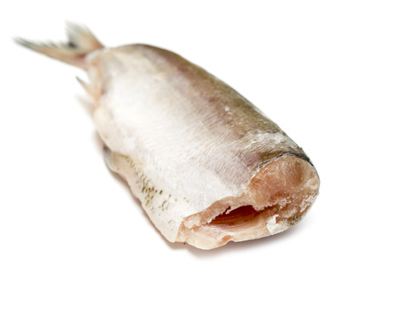 white salmon river: fish without head on white background