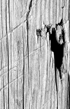 barn black and white: barn board black and white background