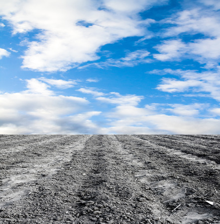 plowed field against the sky Stock Photo