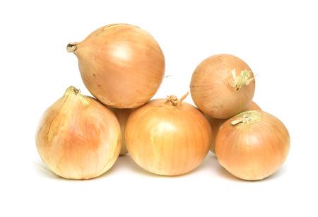 白い背景の上のオニオンの野菜