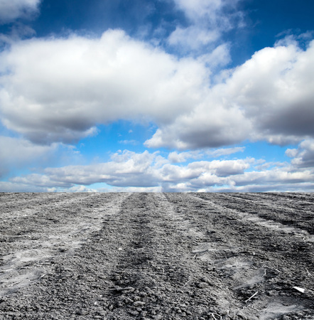plowing: plowed field against the sky Stock Photo
