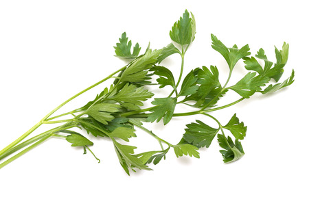 apium graveolens: celery, parsley bunch on white background