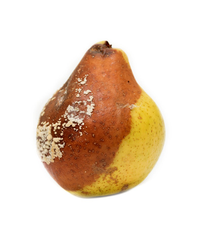 spoiled pear on a white background Stock Photo