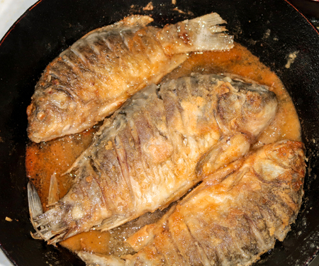 plate: Fish fried food