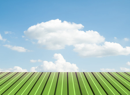 white wood floor: Green flooring against the sky with clouds