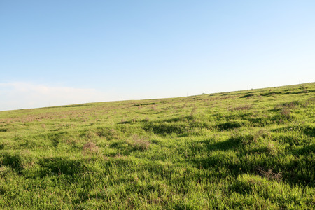 landscape, cold with green grass sky
