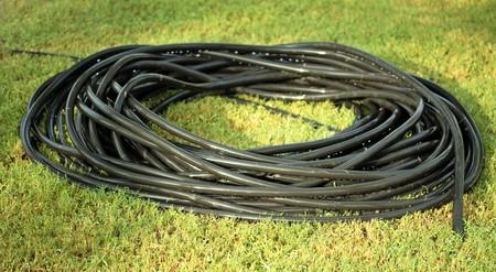 草を散水するための黒のラバーホース