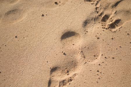 footprints in the sand, sea beach Stock Photo