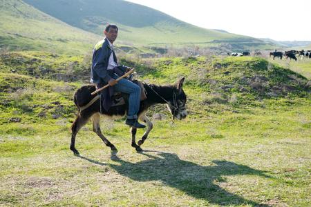 Kazakhstan, Shymkent - April 9, 2017. A man on horseback, a donkey. Spring field grass landscape.